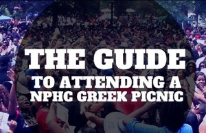 the guide nphc picnic